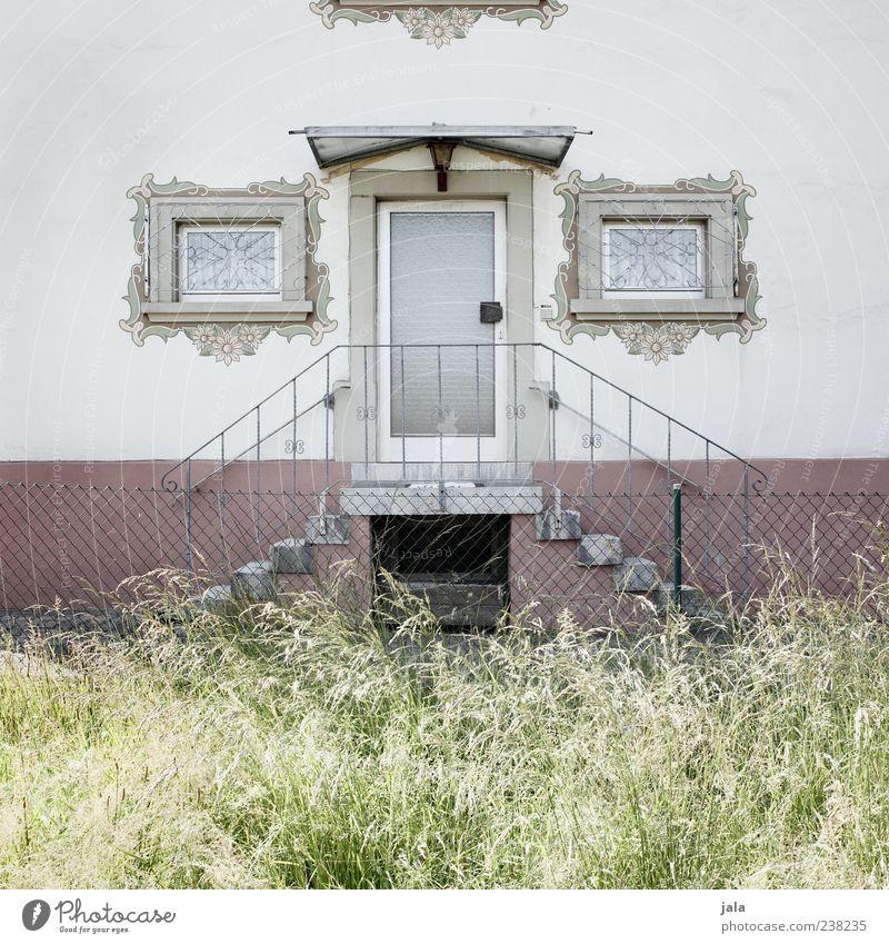 detailverliebt Pflanze Gras Grünpflanze Haus Bauwerk Gebäude Architektur Mauer Wand Treppe Fassade Fenster Tür einzigartig Farbfoto Außenaufnahme Menschenleer