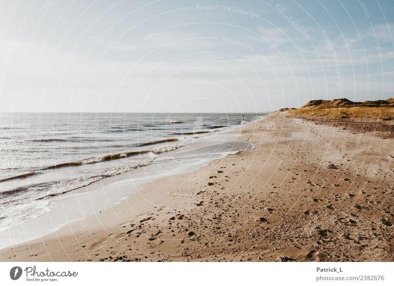 Strandspaziergang Himmel Ferien & Urlaub & Reisen Pflanze Wasser Sonne Meer Erholung Wärme gelb Gesundheit Küste Tourismus Sand frei Wetter Wellen