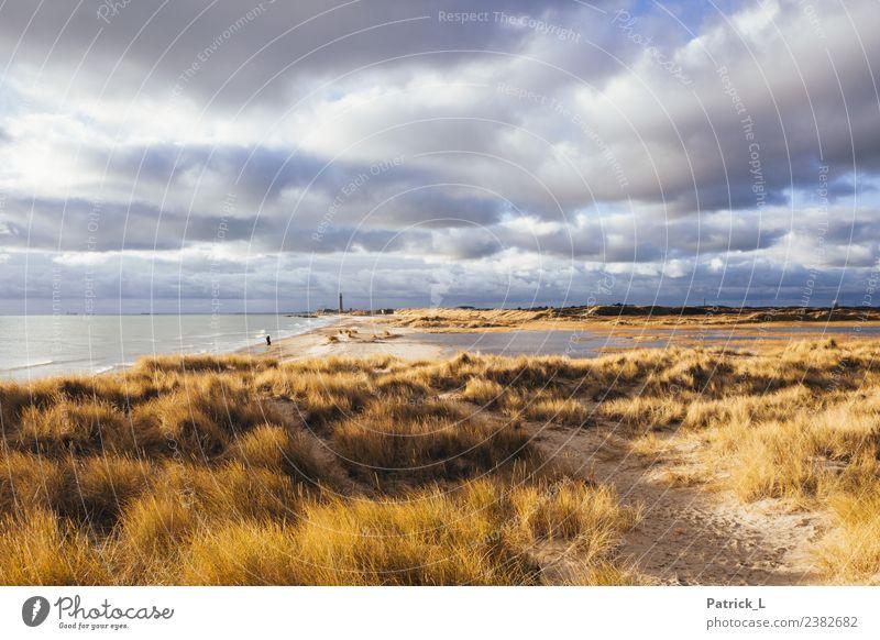 Skagen Grenen Mensch Ferien & Urlaub & Reisen Wasser Landschaft Meer Wolken Ferne Strand Umwelt Küste Tourismus Freiheit Sand Ausflug wandern Horizont