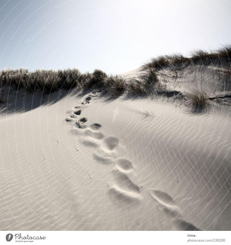 Spiekeroog | Inselgeist Himmel Einsamkeit Erholung Umwelt Leben Wege & Pfade Freiheit Sand hell Zufriedenheit Abenteuer Wunsch Schönes Wetter Spuren geheimnisvoll Stranddüne