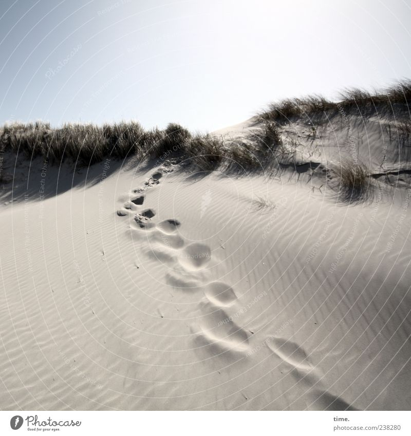 Spiekeroog | Inselgeist Sand Himmel Fußspur hell Abenteuer Duft Einsamkeit Erholung Fortschritt Freiheit geheimnisvoll Leben Risiko Umwelt Wege & Pfade Wunsch