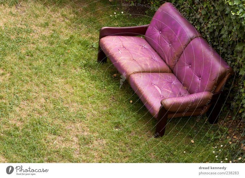 Sofa Rechts Natur Sommer ruhig Erholung Wiese Leben Gras Freiheit Garten Freundschaft Feste & Feiern außergewöhnlich sitzen Platz Stuhl Rasen