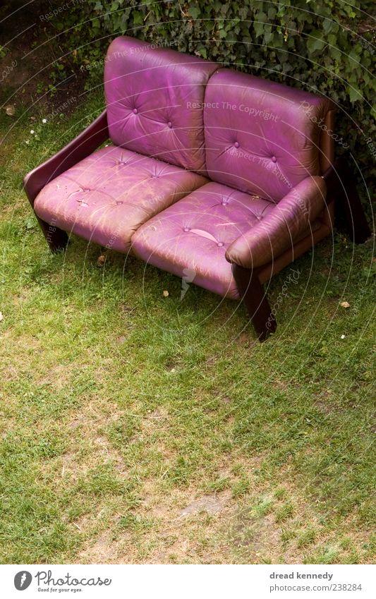 Sofa Oben Leben Erholung ruhig Freiheit Sommer Garten Möbel Stuhl Wohnzimmer Feste & Feiern Freundschaft Natur Gras Wiese Platz Terrasse Leder sitzen