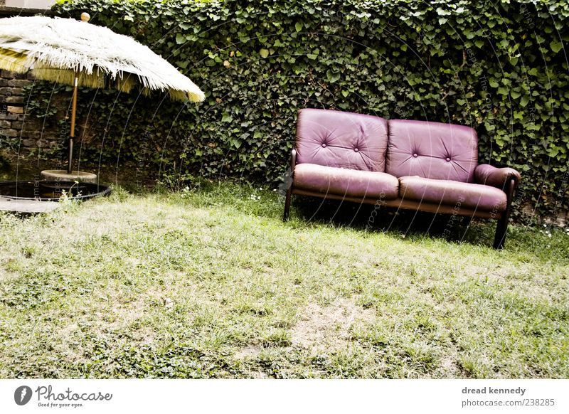 Sofa Mitte Leben Erholung ruhig Freiheit Sommer Garten Möbel Stuhl Wohnzimmer Feste & Feiern Freundschaft Natur Gras Wiese Platz Terrasse Leder sitzen