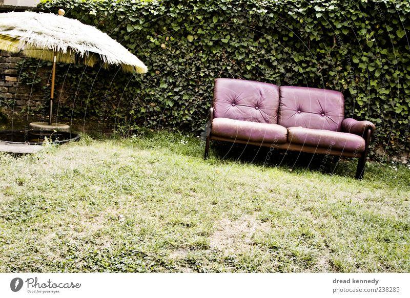 Sofa Mitte Natur Sommer ruhig Erholung Wiese Leben Gras Freiheit Garten Freundschaft Feste & Feiern außergewöhnlich sitzen Platz Stuhl Rasen