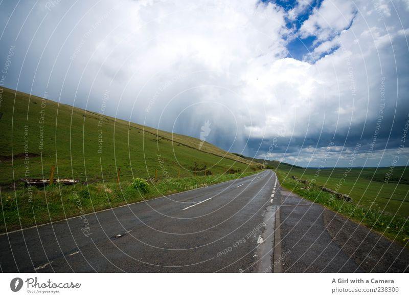 somethings brewing on the horizon Umwelt Natur Landschaft Pflanze Himmel Wolken Gewitterwolken Frühling Sommer Klima Wetter schlechtes Wetter Unwetter Sturm