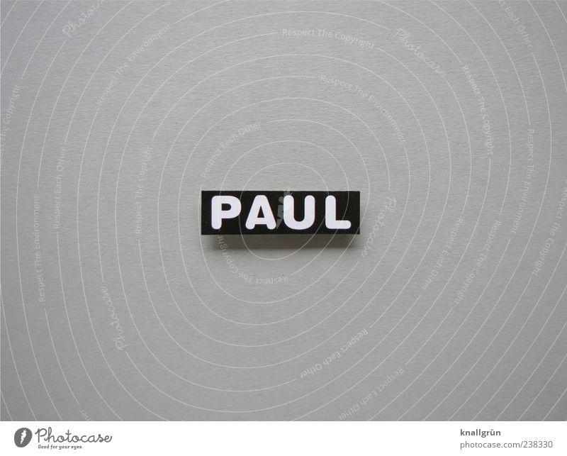Wer ist Paul? Schriftzeichen Schilder & Markierungen eckig grau schwarz weiß Vorname maskulin Buchstaben Großbuchstabe Schwarzweißfoto Studioaufnahme