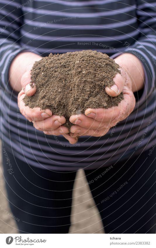 Das ist das Leben. sparen Freizeit & Hobby Gartenarbeit Landwirtschaft Forstwirtschaft Mensch Frau Erwachsene 60 und älter Senior Umwelt Frühling Klima