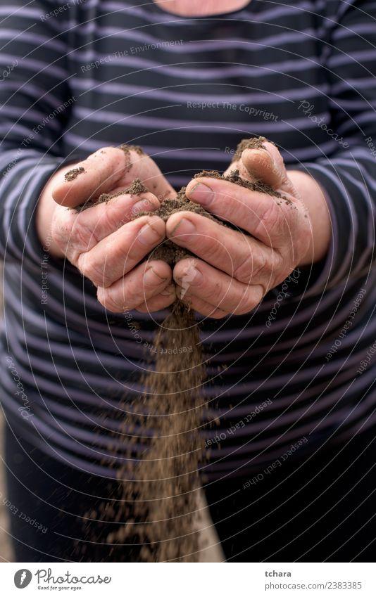 Reiner Boden Garten Arbeit & Erwerbstätigkeit Gartenarbeit Mensch Frau Erwachsene Mann Hand Finger Umwelt Natur Erde Sand Wachstum dreckig nass natürlich braun