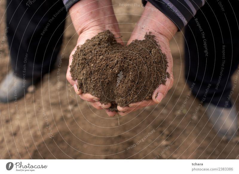 Rette die Natur Garten Arbeit & Erwerbstätigkeit Gartenarbeit Mensch Frau Erwachsene Mann Hand Finger Umwelt Erde Sand Wachstum dreckig nass natürlich braun