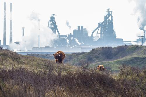 Fortschritt Natur blau Landschaft Umwelt kalt braun Zukunft Klima Industrie stark Klimawandel