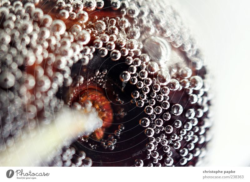 Kirsche Wasser kalt Frucht Getränk süß rund lecker Sekt saftig Spirituosen Erfrischungsgetränk Prosecco