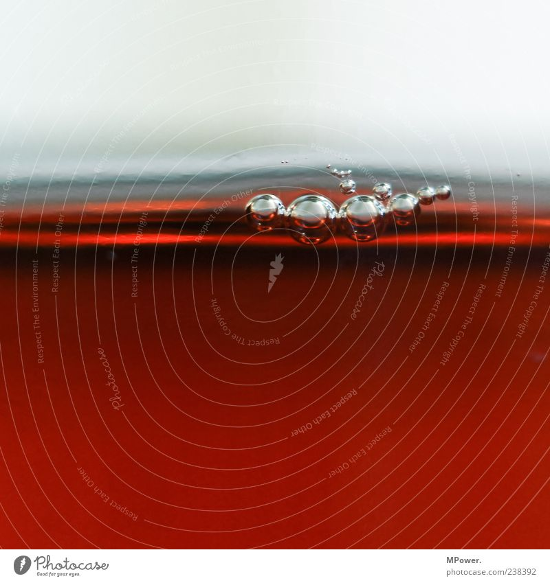 Bubbles V Wasser außergewöhnlich nass rund braun Flüssigkeit Blase Oberflächenspannung viele klein Getränk Glas rot Farbfoto Innenaufnahme Detailaufnahme