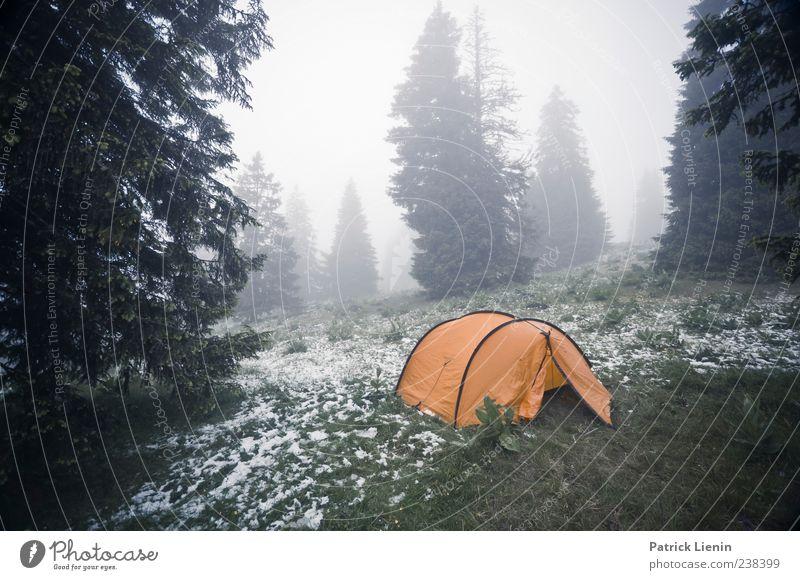 Step outside in the morning Ferien & Urlaub & Reisen Camping Berge u. Gebirge Umwelt Natur Landschaft Pflanze Urelemente Wolken Klima Wetter schlechtes Wetter