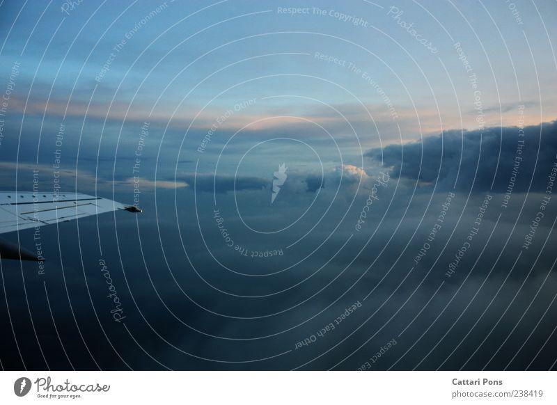 höhere Ebene Himmel Ferien & Urlaub & Reisen Wolken Ferne oben hell Horizont fliegen Ausflug Flugzeug Luftverkehr leuchten Tragfläche gigantisch
