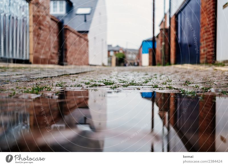 Pfütze Ferien & Urlaub & Reisen Stadt Wasser Haus ruhig Straße Wand Gras Gebäude Mauer Ausflug authentisch nass Bauwerk Städtereise Altstadt