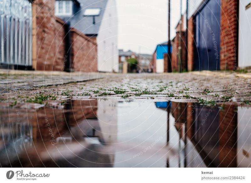 Pfütze ruhig Ferien & Urlaub & Reisen Ausflug Sightseeing Städtereise Tor Wasser Gras Wasseroberfläche Oxford England Stadt Stadtzentrum Altstadt Menschenleer