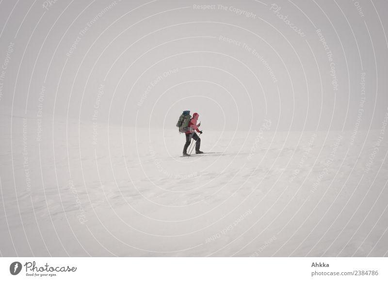 Einsamer Skiwanderer in Schneewüste Mensch Natur Landschaft weiß rot Einsamkeit Winter Bewegung wild Horizont Eis authentisch Abenteuer Perspektive Zukunft