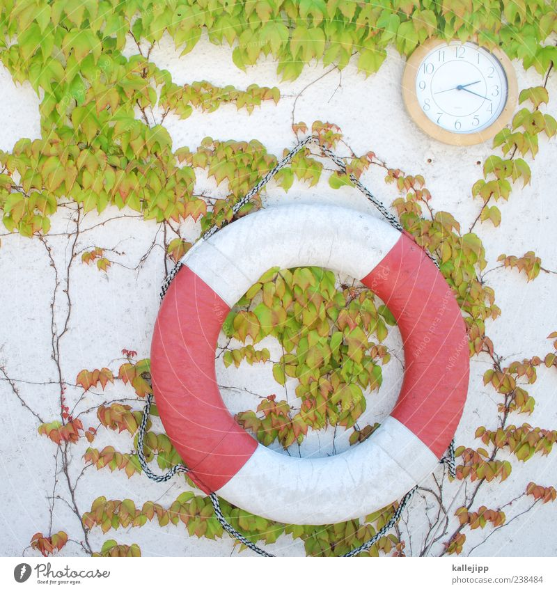 nachmittagshitze weiß grün rot Wand Spielen Schwimmen & Baden Freizeit & Hobby Fassade Uhr Hilfsbereitschaft Sicherheit Schwimmbad Ewigkeit Rettung Rettungsring Freibad