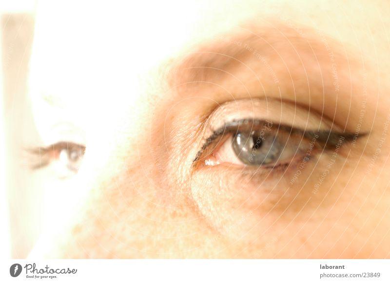 augenblick Frau Gesicht Auge Schminke Sommersprossen Wimpern Augenbraue Überbelichtung Regenbogenhaut