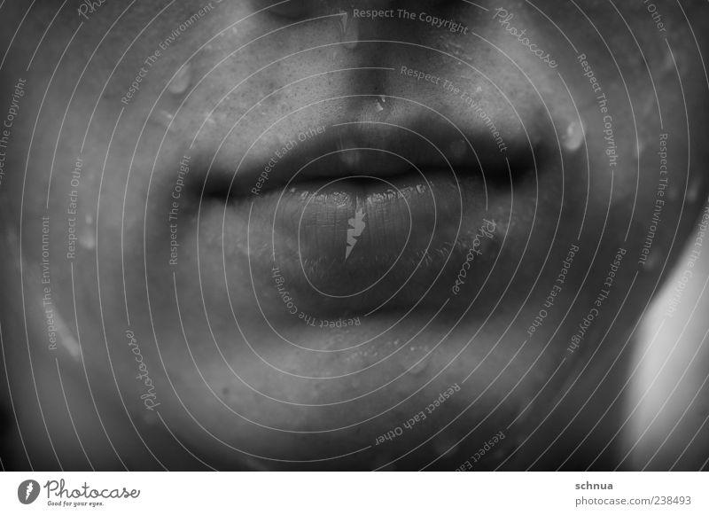 Nasse Erfrischung Mensch Wasser weiß Sommer schwarz kalt grau Kopf Regen nass maskulin frei frisch Wassertropfen Tropfen Flüssigkeit