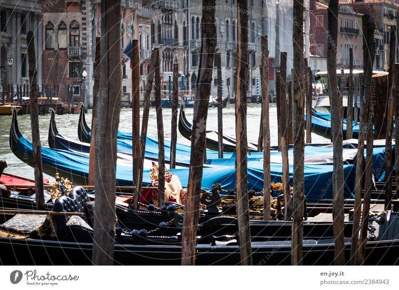 Durchblick Ferien & Urlaub & Reisen Tourismus Ausflug Sightseeing Städtereise Sommer Sommerurlaub Kanal Wasserstraße Canal Grande Venedig Italien Stadt