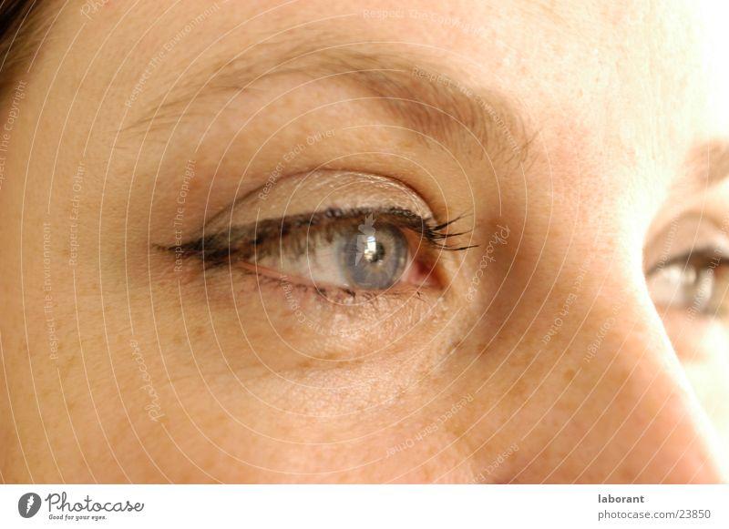 augenblick später Frau Gesicht Auge Denken Schminke Sommersprossen Wimpern Augenbraue Überbelichtung Regenbogenhaut