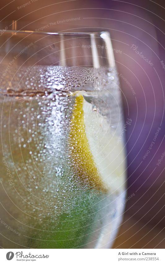 Gefrierschock Lebensmittel Ernährung Getränk trinken Erfrischungsgetränk Trinkwasser Limonade Sekt Prosecco Champagner Glas frieren kalt Zitrone verschönern