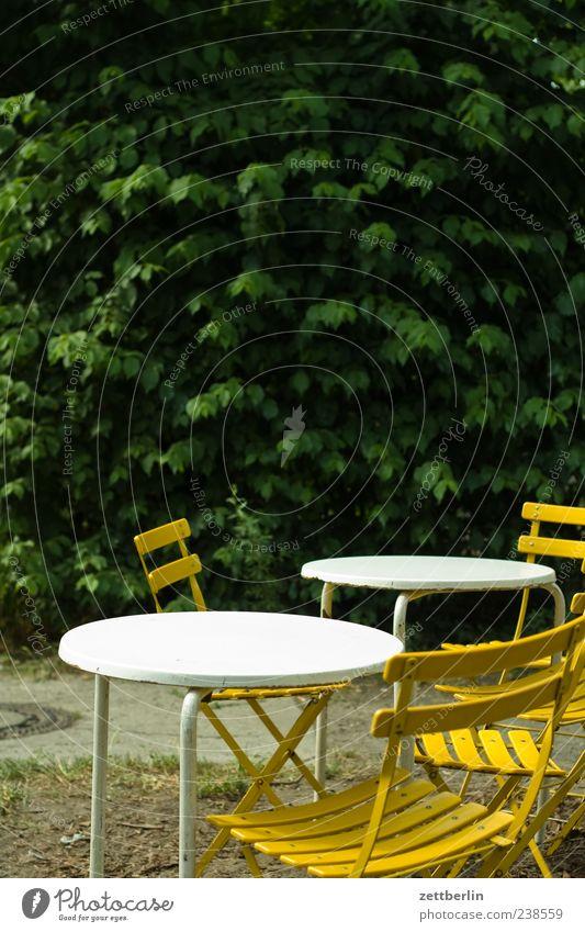 Verabredung Natur Ferien & Urlaub & Reisen gelb Feste & Feiern Ausflug Tourismus Tisch leer Lifestyle Sträucher Stuhl Gastronomie Restaurant Klappstuhl Bar