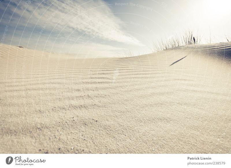 Spiekeroog | elusive dreams Natur Ferien & Urlaub & Reisen Meer Sommer Strand Einsamkeit Ferne Umwelt Landschaft Küste Freiheit Sand hell Erde Zufriedenheit Insel