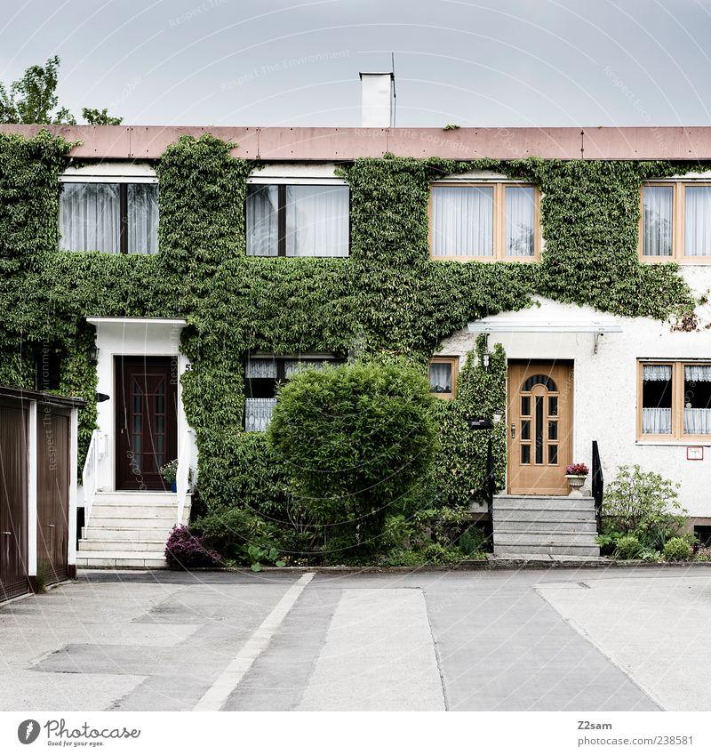 nachbarn Häusliches Leben Wohnung Haus Umwelt Sommer Sträucher Efeu Grünpflanze Dorf Gebäude Architektur authentisch eckig einfach Originalität retro trist