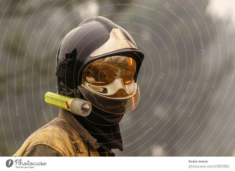 Feuerwehrmann Arbeit & Erwerbstätigkeit Beruf Dienstleistungsgewerbe Umwelt Natur Landschaft Klimawandel Wind Baum Wald heiß natürlich stark wild gefährlich