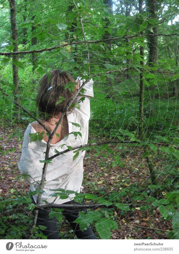 Frau allein im Wald feminin Erwachsene 1 Mensch 18-30 Jahre Jugendliche Natur Gefühle Rückansicht Hemd lässig stehen brünett