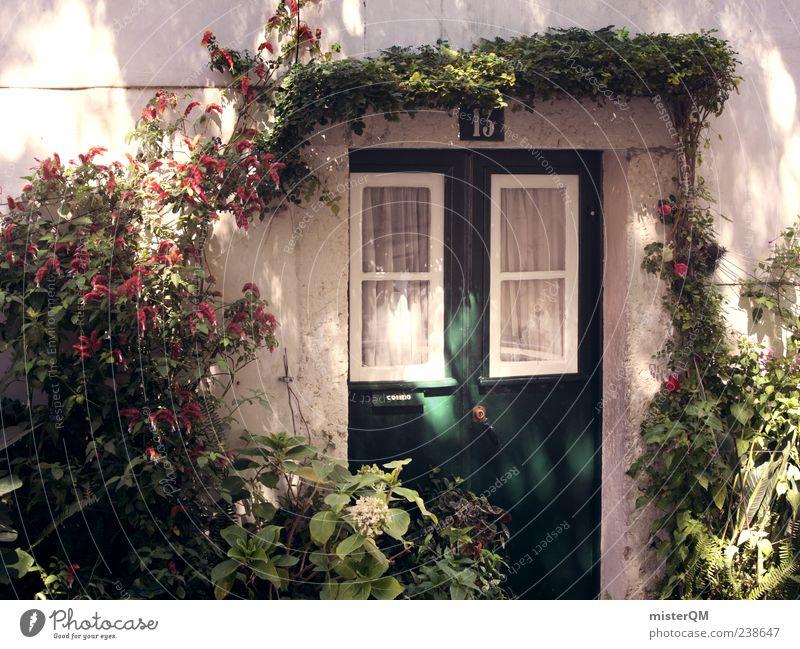 13. Pflanze Fenster Wand Garten Gebäude Tür Fassade ästhetisch Idylle Tor Eingang Lichtspiel Portugal mediterran Ranke 13