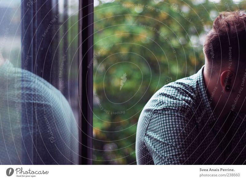 Schulzeit. Mensch Jugendliche Erwachsene Fenster Traurigkeit träumen maskulin 18-30 Jahre einzigartig Trauer Ohr Hemd Fensterscheibe Sorge anonym Ohrringe