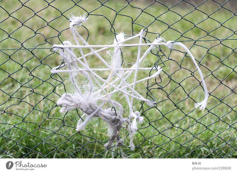 Flickwerk Natur Wiese sparen Armut kaputt grün Kreativität Zerstörung Zaun Zaunlücke Reparatur Problemlösung Schnur Loch Gehege Maschendrahtzaun Drahtzaun
