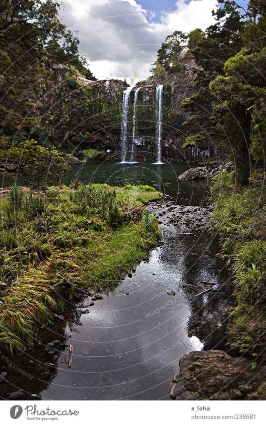 water falls Natur Pflanze Urelemente Wasser Himmel Wolken Schönes Wetter Gras Sträucher Felsen Flussufer Teich Bach Wasserfall Stein Flüssigkeit hoch nass