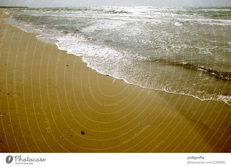 Weststrand Umwelt Natur Landschaft Sand Wasser Sonnenlicht Sommer Wellen Küste Strand Ostsee Darß fantastisch Unendlichkeit nass natürlich Stimmung Farbfoto