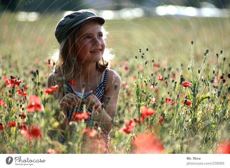 mittendrin Natur Pflanze Sommer Mädchen Blume Umwelt Landschaft Wiese Gras Glück Park Zufriedenheit blond Kindheit Feld natürlich