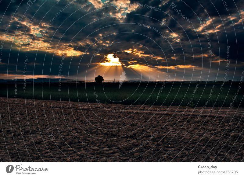 Sonne vs. Wolken Ferne Landschaft Wiese Feld Macht Sonnenuntergang Erkenntnis Sonnenaufgang Wolkenhimmel Himmel