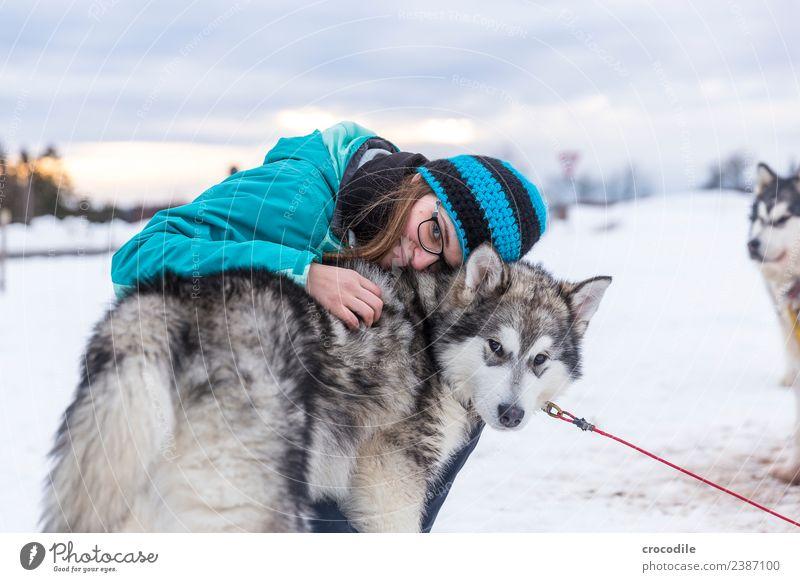# 762 Husky Hund Junge Frau Streicheln Kuscheln Winter Schnee Schlittenhund Mütze Brille blau Schwache Tiefenschärfe alaskan malamut Nutztier Arbeitstier