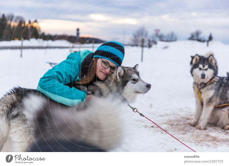 # 761 Husky Hund Junge Frau Streicheln Kuscheln Winter Schnee Schlittenhund Mütze Brille blau Schwache Tiefenschärfe alaskan malamut Nutztier Arbeitstier