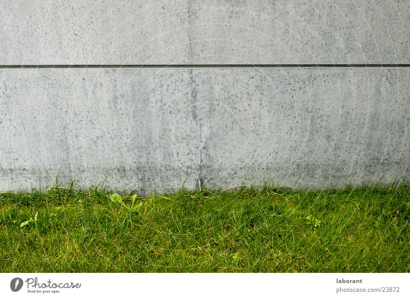 betongg Beton grau Gras Gebäude Wiese grün Mauer Wand Architektur