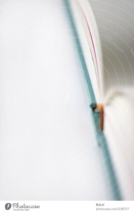 Karawanenziegenledereinband blau weiß offen Buch leer Papier Buchseite Bucheinband Redewendung Tiefenschärfe Printmedien Detailaufnahme blättern unbedruckt