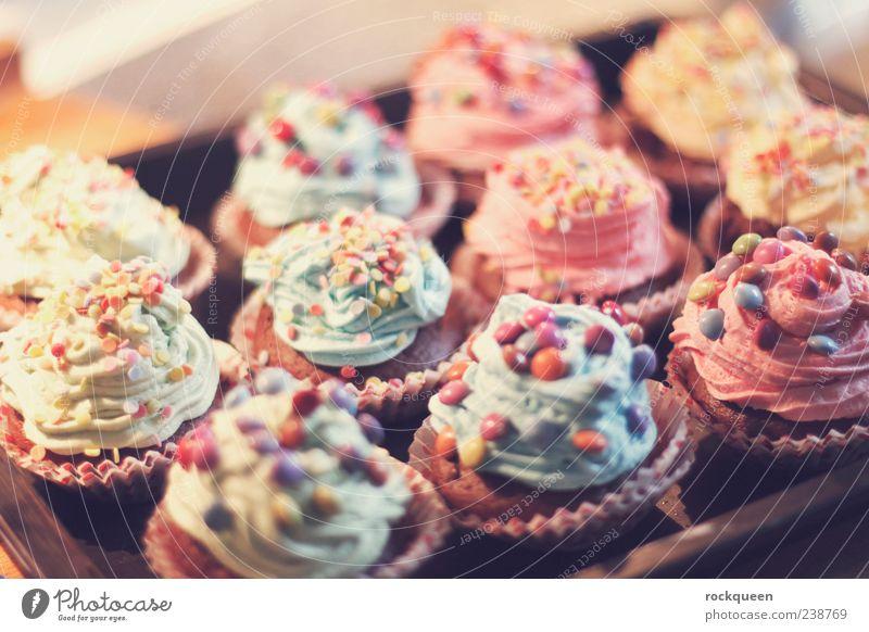Süße Verführung Süßwaren Ernährung trendy blau mehrfarbig gelb grün violett rosa rot Muffin Schokolinsen verführerisch Farbfoto Innenaufnahme Nahaufnahme