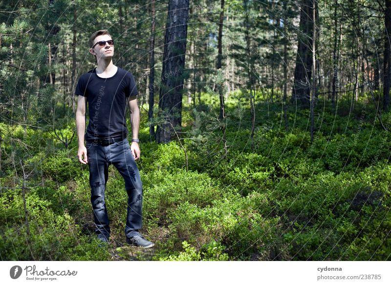 Wood-Style Mensch Natur Jugendliche ruhig Erwachsene Wald Erholung Umwelt Landschaft Leben Freiheit Stil Ausflug 18-30 Jahre stehen Junger Mann