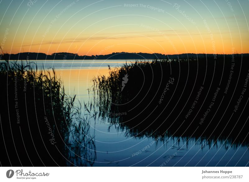 Dunkle Seite des Mondes Umwelt Natur Landschaft Wasser Himmel Nachthimmel Sonnenaufgang Sonnenuntergang Küste Seeufer Gefühle Stimmung Glück Tatkraft