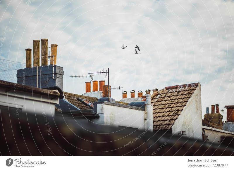 Über den Dächern III Himmel Stadt Haus Wolken Architektur Gebäude Fassade Stimmung oben Zufriedenheit Horizont Europa Dach Schornstein Kleinstadt Hafenstadt