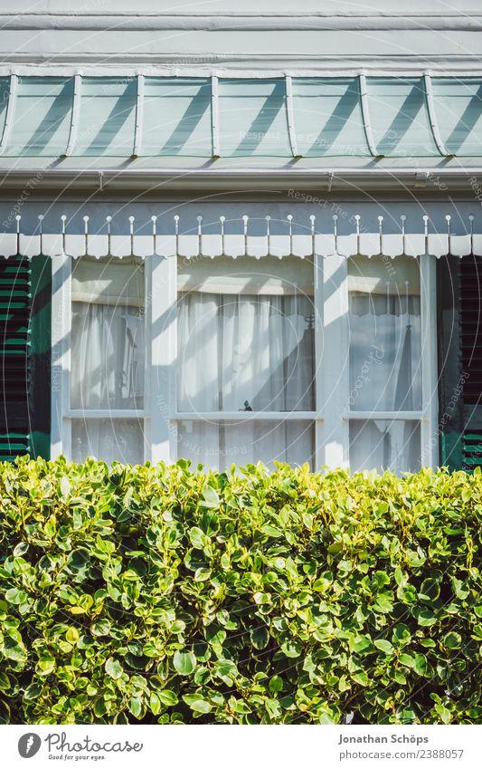 vintage Fassade Wohnhaus Brighton, England Stadt grün weiß Sonne Haus Fenster Hintergrundbild Architektur Gebäude Zufriedenheit Bauwerk Balkon Hütte Terrasse