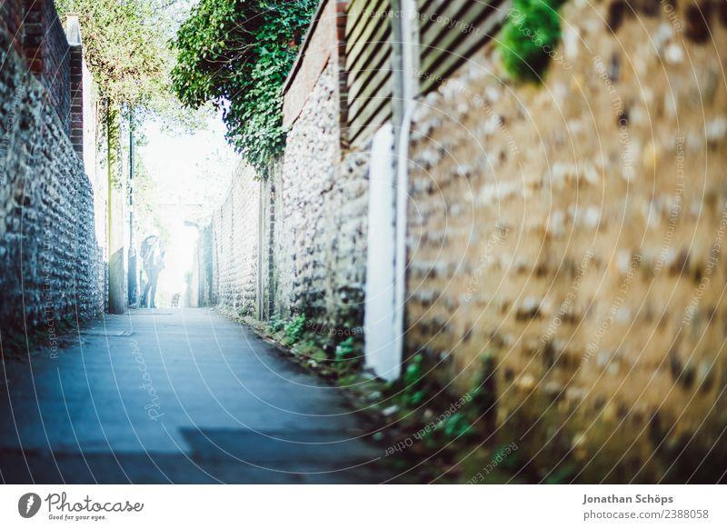 Gasse in Brighton, England Stadt Stadtrand ästhetisch laufen Mauer Englisch Wege & Pfade Fußgänger Fußgängerzone einzeln geradeaus Farbfoto Außenaufnahme